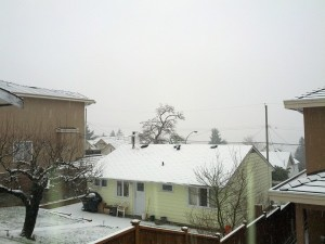 snow in Vancouver